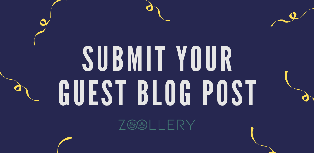 Submit your Guest blog posts to zoollery
